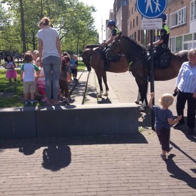 Op de terugweg kwam ik dit tegen. Ik had in IJburg nog nooit de politie te paard gezien.