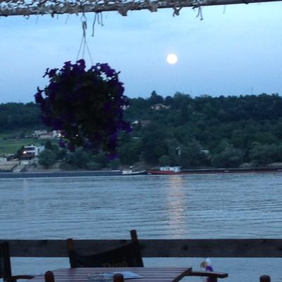 Ik was nog erg suf en moe (van de warmte en de groeispurt van onze kleine man), maar 's avonds gingen we gezellig naar een terrasje aan het strand van Novi Sad. Daar zagen we de maan opkomen.