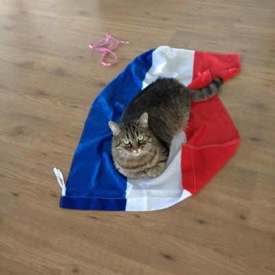 Puck is sinds de Toppers erg verliefd op deze vlag. Ze vecht ermee, slaapt erop en sleept hem achter zich aan. Of ze brengt haar speelgoed er heen.
