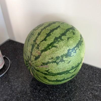 's Avonds had ze een etentje en was het voor mij tijd voor weer een watermeloenen-slachting.