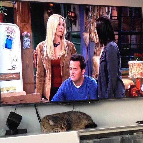 We keken lekker veel series. Dit was alweer de laatste aflevering van Friends. :-( Nu zijn we overigens met Orphan Black begonnen. Superspannend!